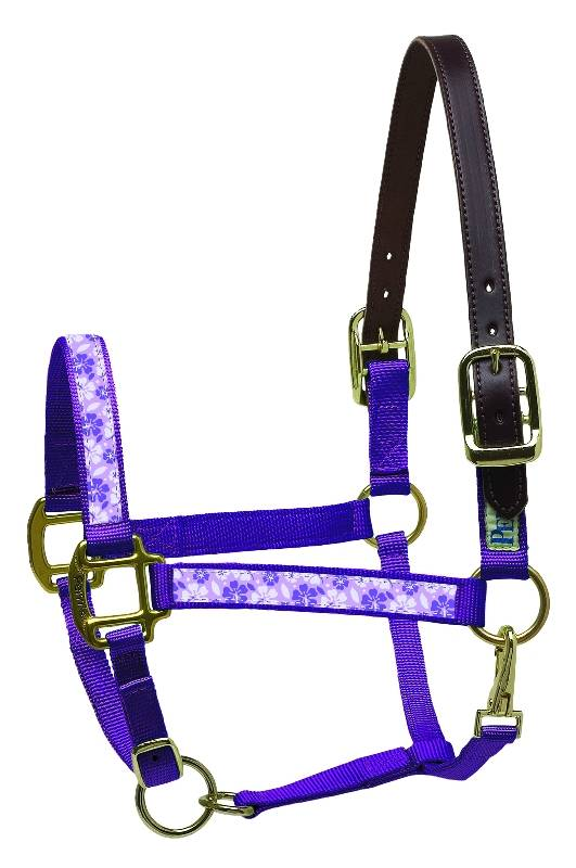 Perri's Leather Ribbon Safety Halter - FREE Nylon Cotton Lead Valued at $ !