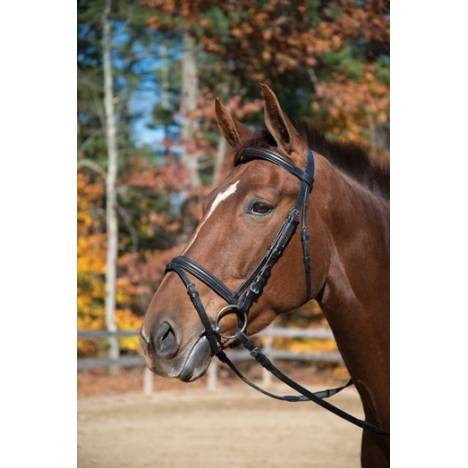 Baltimore Dressage Bridle