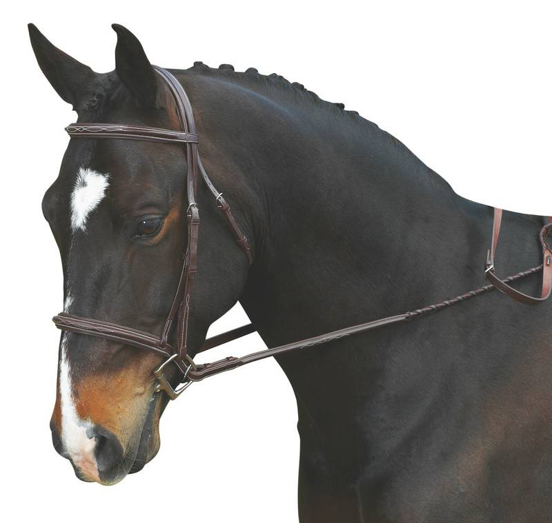 Collegiate Comfort Crown Raised Padded Fancy Stitched Bridle