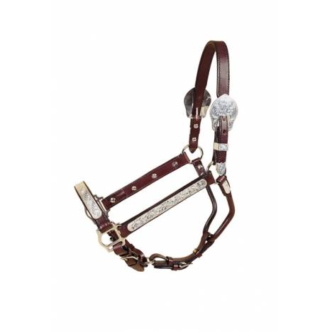 TORY LEATHER Straight Cheek Show Halter - Rochester Plates