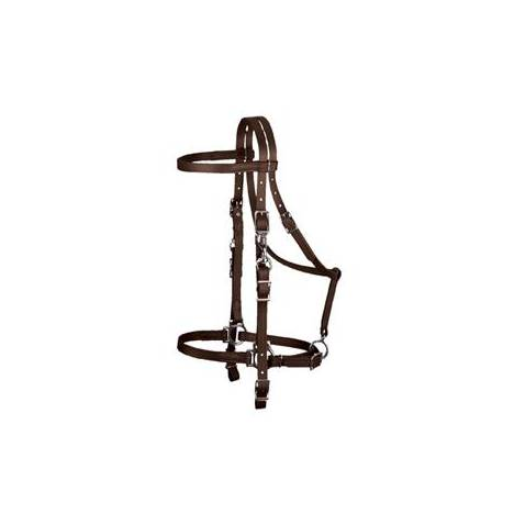 Weaver Synthetic Halter Bridle