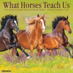 Kelley What Horses Teach Us 2020 Calendar