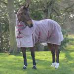 Weatherbeeta ComFiTec Ripshield Plus With Belly Wrap Detach A Neck Fly Sheet