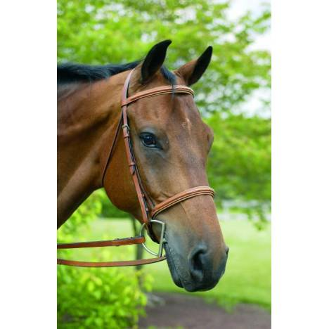 Henri de Rivel Horse Fancy Raised Padded Bridle with Laced Reins Pro Collection