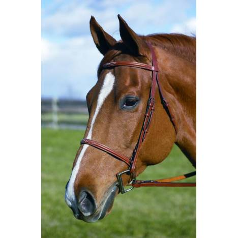 Henri de Rivel Fancy Raised Bridle With Laced Reins Pro