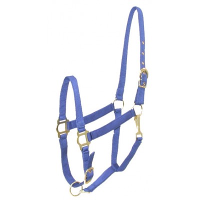 Gatsby Adjustable Nylon Halter with Snap - Royal - Pony