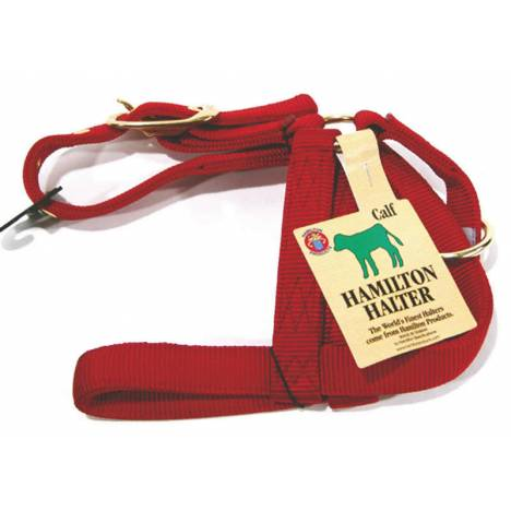 Hamilton Turnout Halter For Calves
