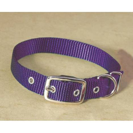 Single Nylon Dog Collar
