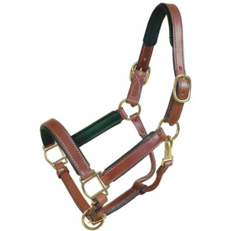 """TORY LEATHER 1"""" Padded Halter with Brass Hardware"""