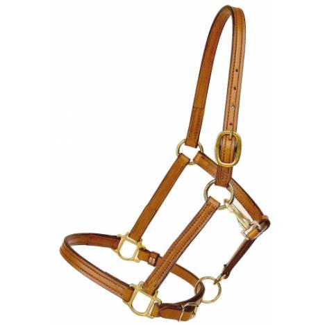 """TORY LEATHER 3/4"""" Halter - Crown Buckle & Brass Hardware"""