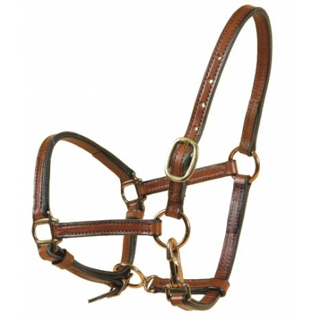 """TORY LEATHER 5/8"""" Halter - Crown Buckle & Brass Hardware"""