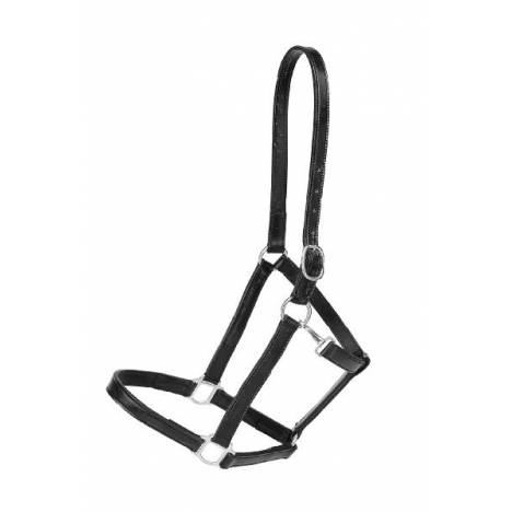 "TORY LEATHER 1"" Halter - Crown Buckle & Brass Hardware"