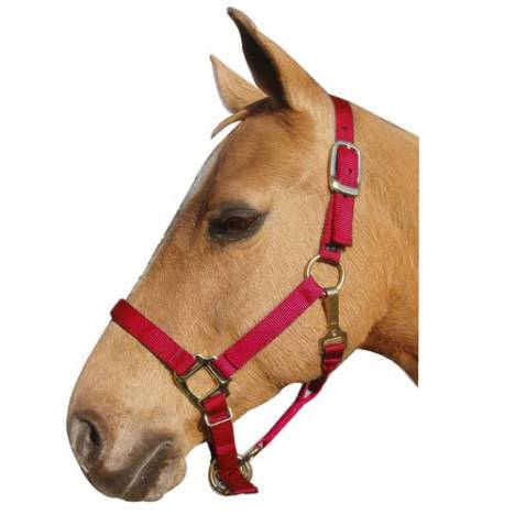 Nylon Adjustable Halter