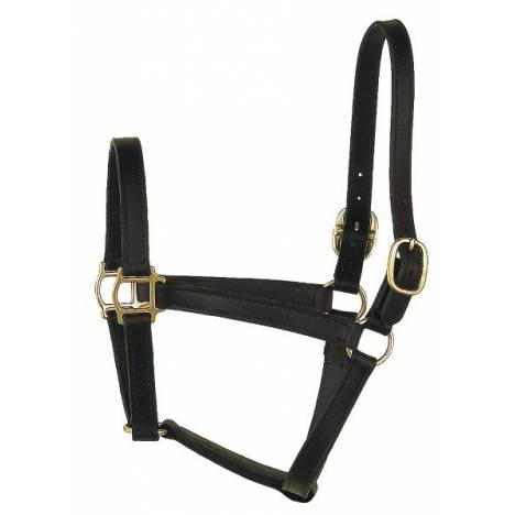 Perri's Track Style Leather Turnout Halter