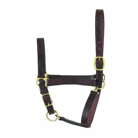 Perri's Economy Leather Halter