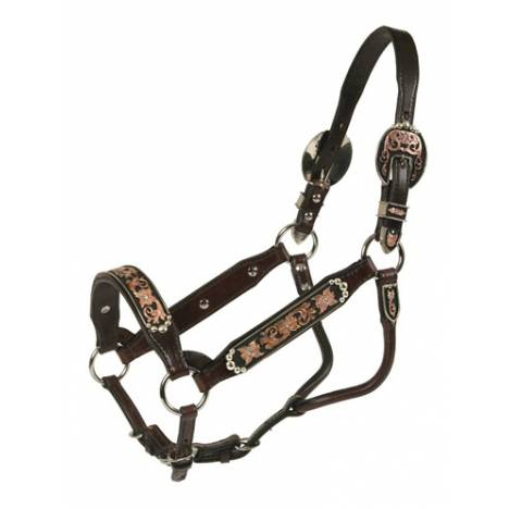 Tory Leather San Jose Congress Style Show Halter & Lead
