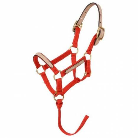 Tough-1 Miniature Horse Nylon Break-Away Halter