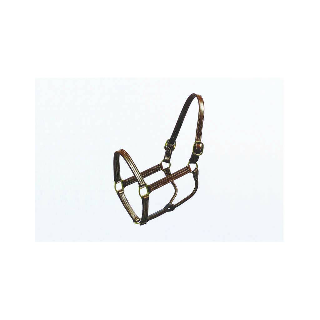 Halter Thoroughbred 1 Inch