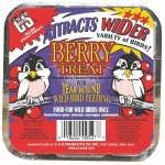 Berry Suet Treat