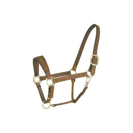 Abetta Leather Halter