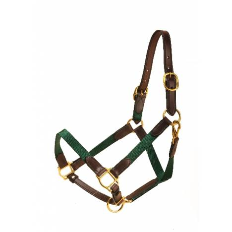 """TORY LEATHER 1"""" Nylon Halter - Leather Tabs"""
