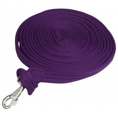 Gatsby Cushion Web Lunge Line with Loop Handle - 25'