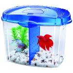 Aqueon Betta Bowl Starter Kit