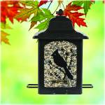 PerkyPet Birds & Berries Lantern Feeder
