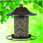 PerkyPet Panorama Bird Feeder