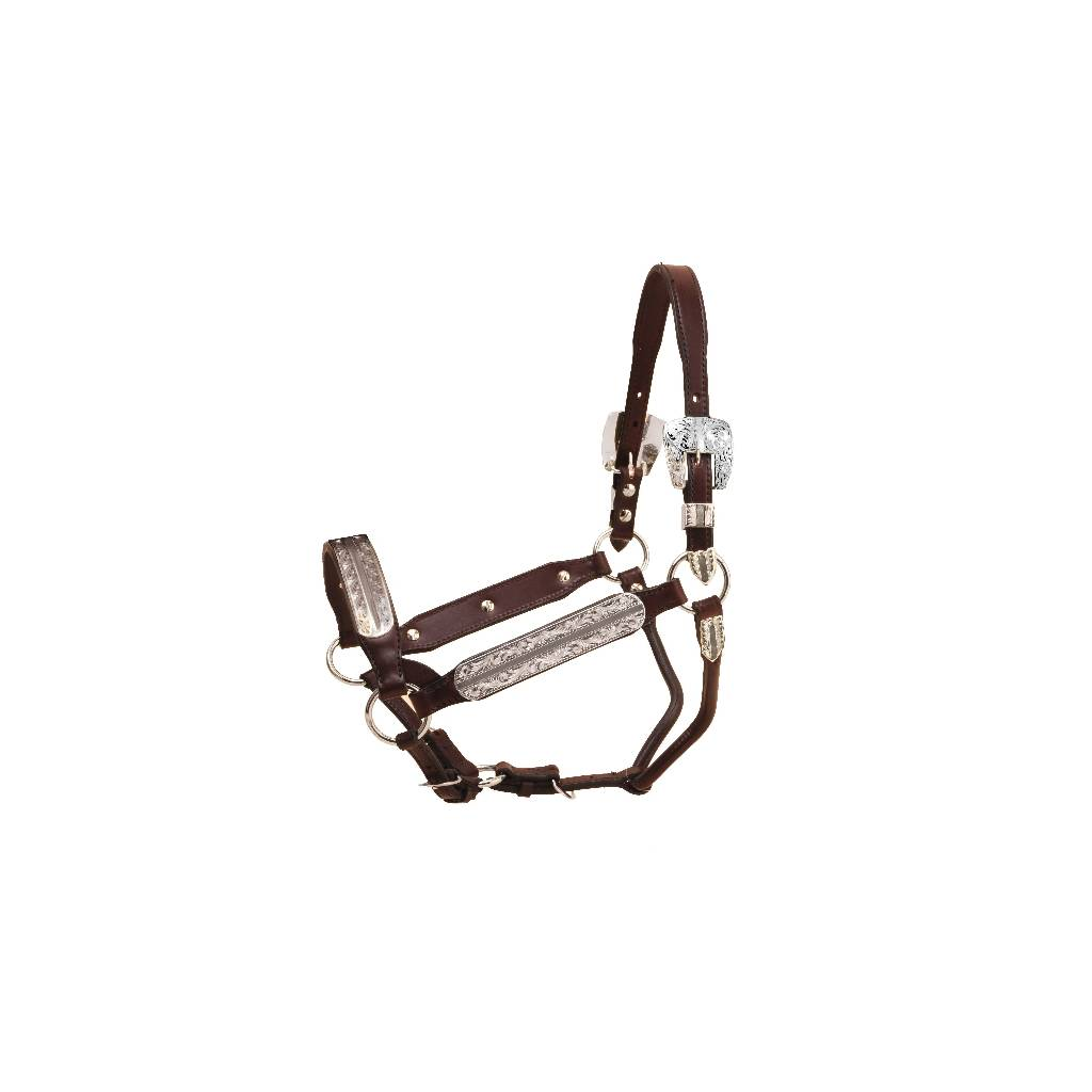 Tory Leather Morristown Congress Style Show Halter & Lead