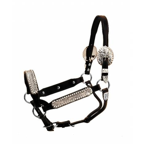 Tory Leather Buffalo Congress Style Show Halter & Lead
