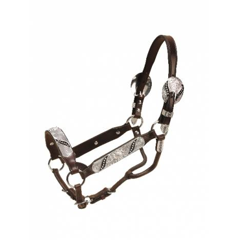 Tory Leather Silver Ribbon Congress Style Show Halter & Lead