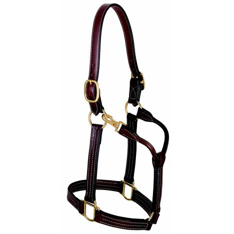 "Weaver Leather 1 1/8"" Thoroughbred Halter"
