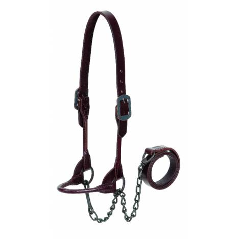 Weaver Leather 4-H Show Halter