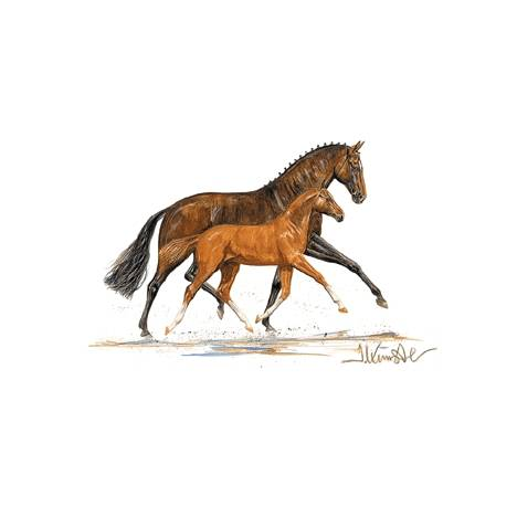 Cappuccini (Mare & Foal) By: Jan Kunster, Matted