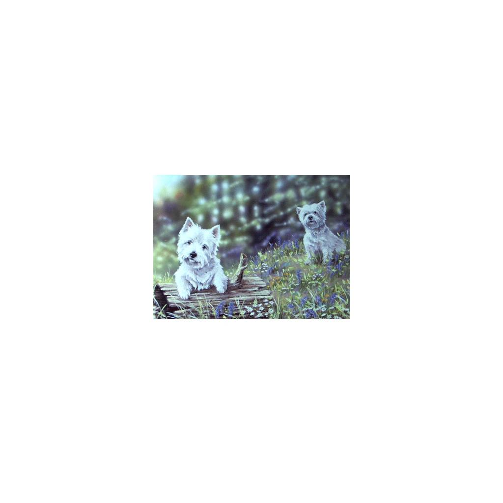 Time to Play (West Highland Terrier) Blank Greeting Cards - 6 Pack