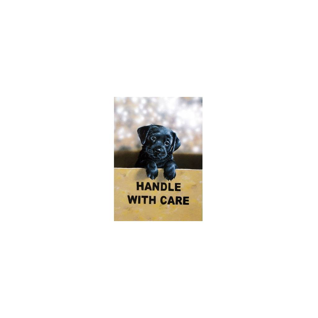 Handle with Care (Labrador Retriever) Blank Greeting Cards - 6 Pack