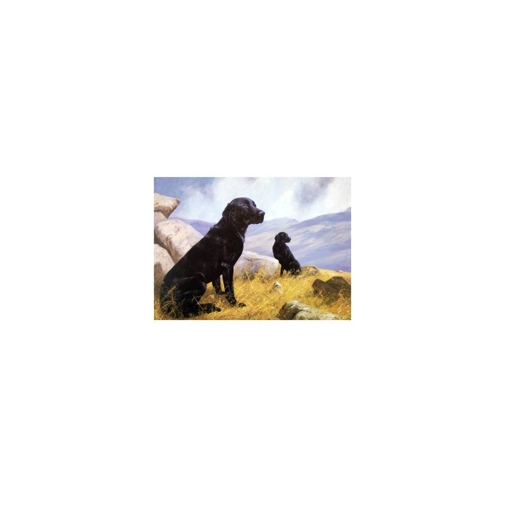 On Duty (Labrador Retriever) Blank Greeting Cards - 6 Pack