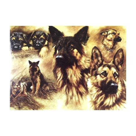 GSD Detail (German Shepherd) Blank Greeting Cards - 6 Pack