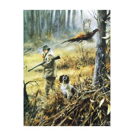 The One that Got Away (English Springer) Blank Greeting Cards - 6 Pack