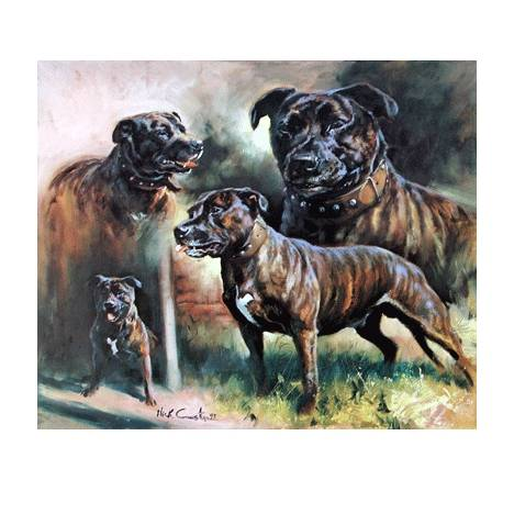 Staffordshire Bull Terrier Composite By: Mick Cawston