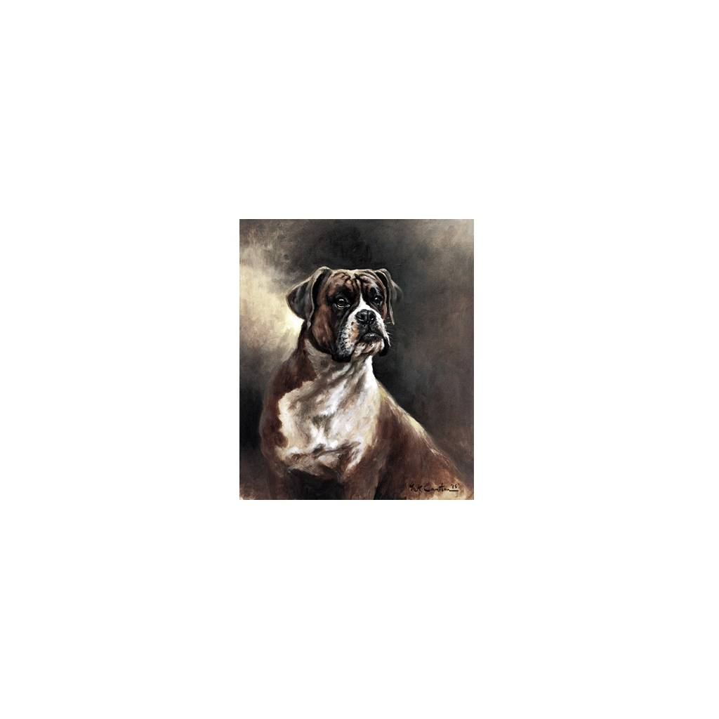 Portrait of a Boxer By: Mick Cawston