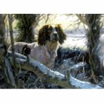 Winters Morning (English Springer) Blank Greeting Cards - 6 Pack