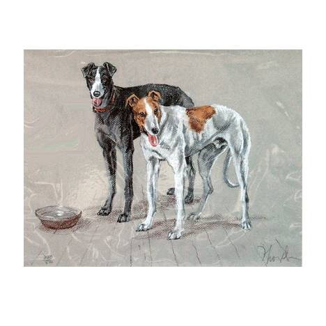 Greyhounds By: David Thompson, Matted