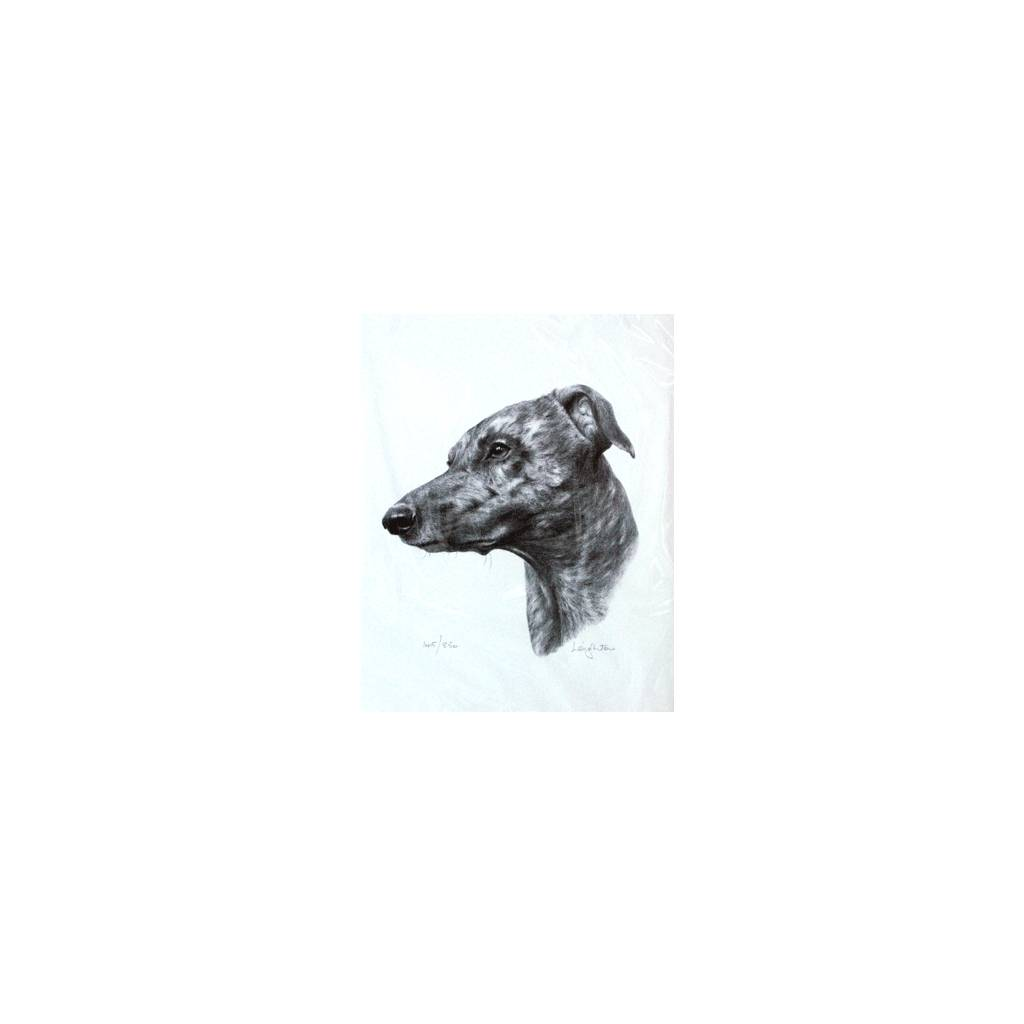 Greyhound By: Sandra Leighton, Matted