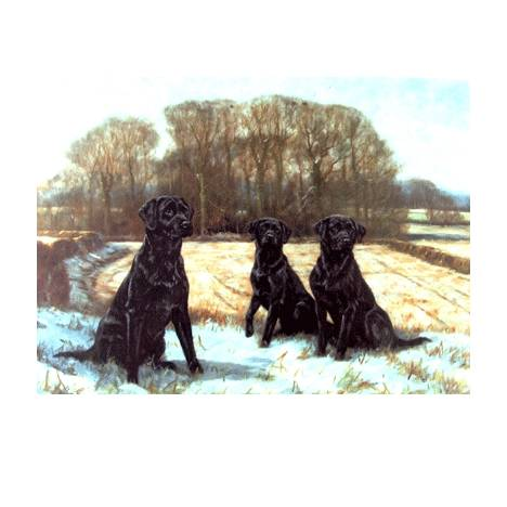 Early Snow (Labrador Retrievers) Blank Greeting Cards - 6 Pack