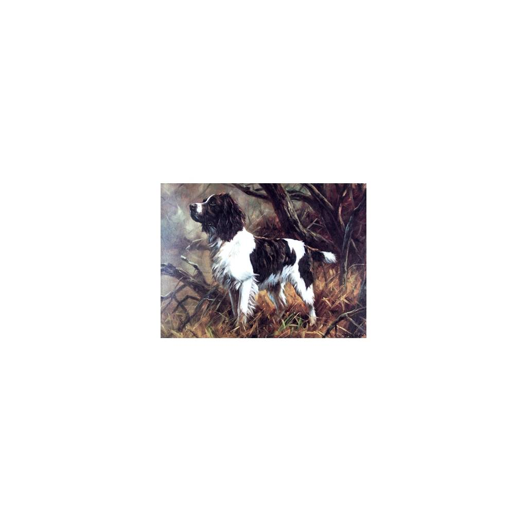 A Good Sort (English Springer) Blank Greeting Cards - 6 Pack