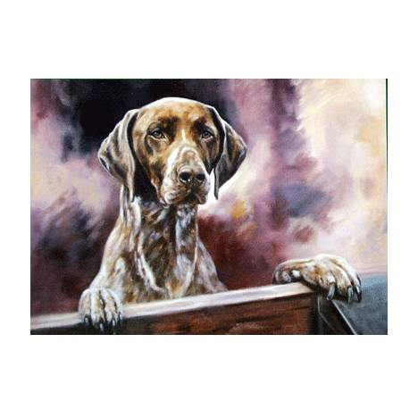 Locked Out (German Shorthair Pointer) Blank Greeting Cards - 6 Pack