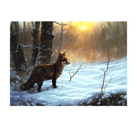 On Point (Fox) Blank Greeting Cards - 6 Pack