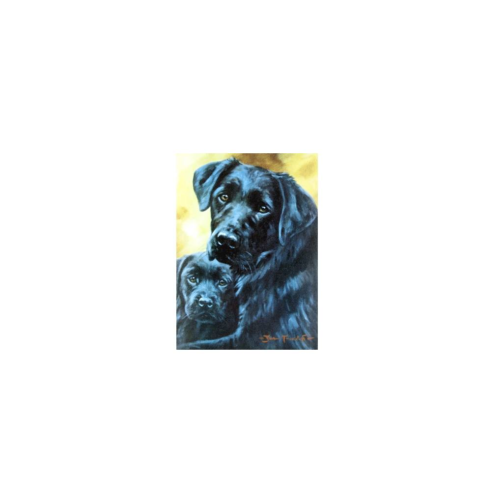 Safe and Secure (Labrador Retriever) Blank Greeting Cards - 6 Pack